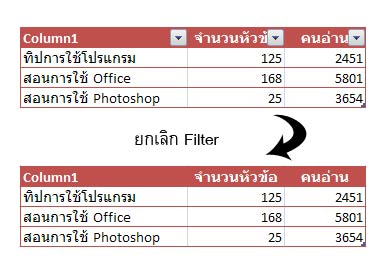 Remove Filter Excel 2007