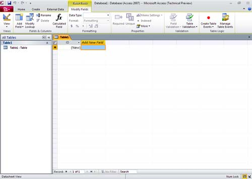 Microsoft Access 2010 Screen