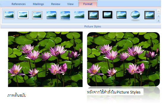 Picture Styles in MS Office 2007