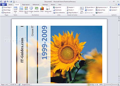 Microsoft Word 2010 screen